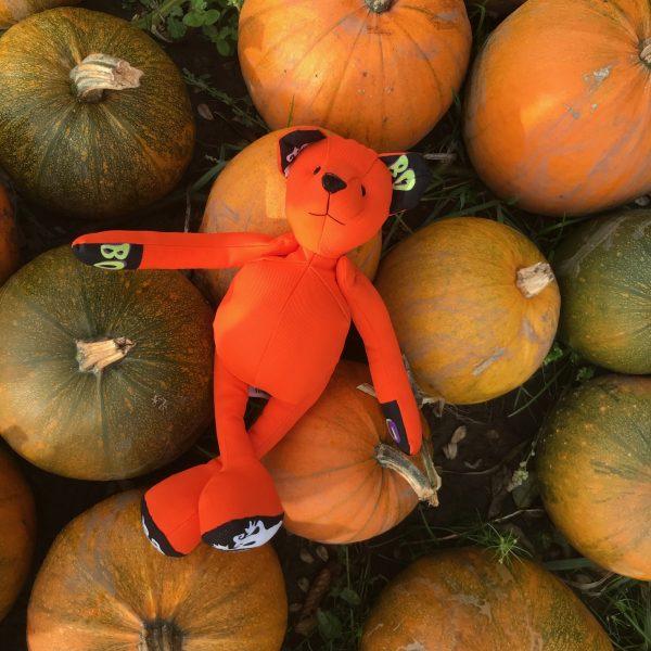 Halloween fabric Teddy
